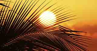 خوزستان در اولین روز خرداد به 43 درجه میرسد