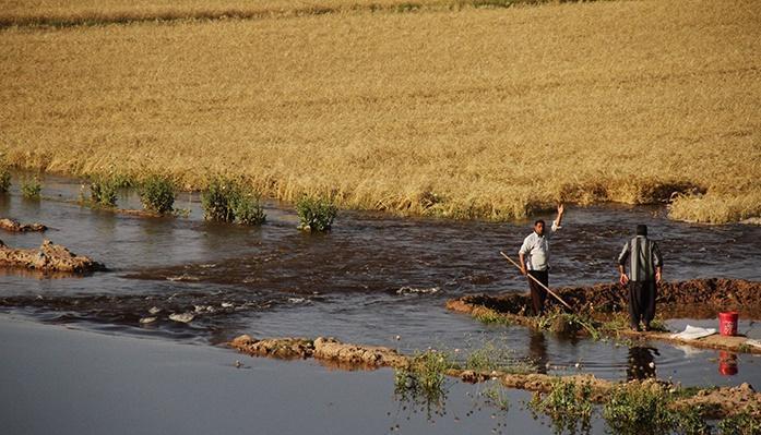 27 ماه سردرگمی کشاورزان شعیبیه برای دریافت خسارت سیل؛ مسئولان هنوز امیدوارند