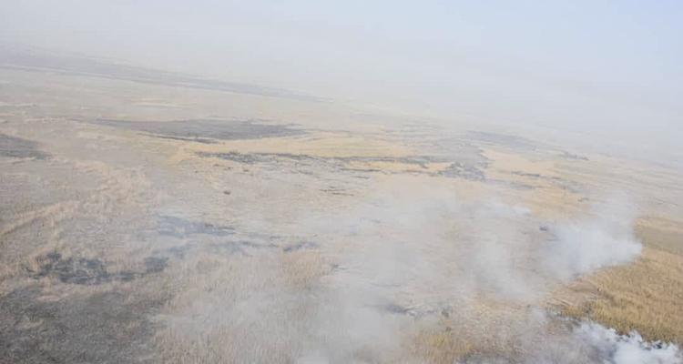 اطفای حریق در بخش عراقی هورالعظیم ادامه دارد