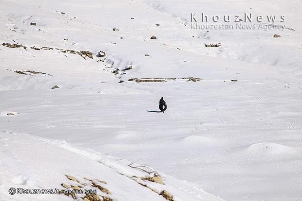 تصاویر / تاراز سفیدپوش