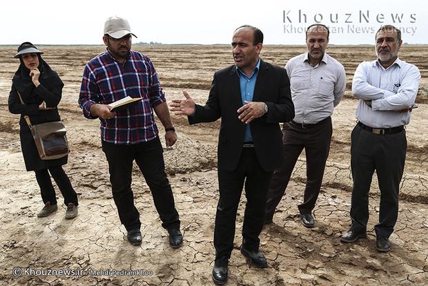 تصاویر / بازدید قائم مقام اداره کل منابع طبیعی و آبخیزداری خوزستان از طرح مهار کانون های بحرانی ریزگردها