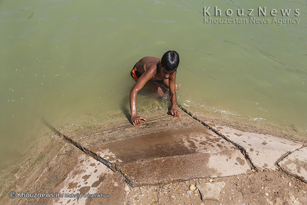 تصاویر / آبتنی در گرمای خوزستان