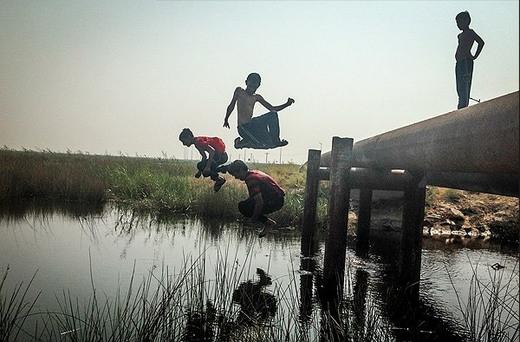 تصاویر / تالاب بین المللی شادگان