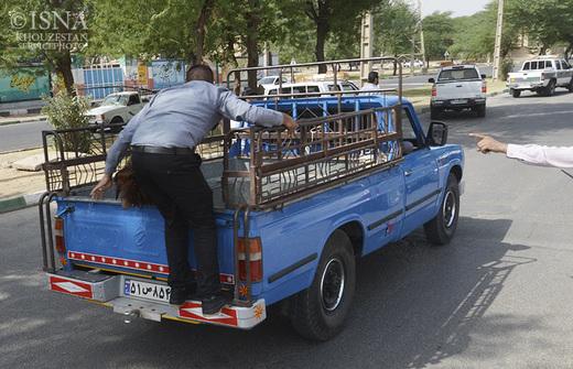 تصاویر / جمع آوری محل های عرضه غیر مجاز دام زنده در اهواز