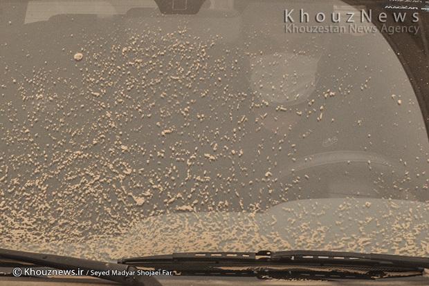 تصاویر/ اهواز، فرو رفته در خاک / 1
