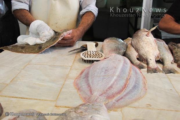 تصاویر / بازار ماهی در بندر امام خمینی